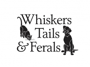Whiskers, Tails and Ferals