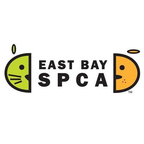East Bay SPCA Dublin