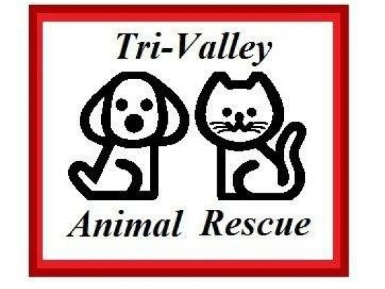 Tri-Valley Animal Rescue