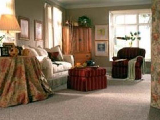 Huge Carpet Selection
